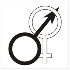 Joined Male & Female Symbol Poster