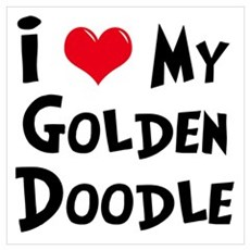 I Love My Golden Doodle Poster