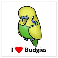 I Love Budgies Poster