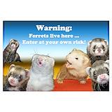Warning ferrets live here Wall Art