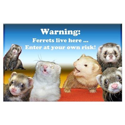 Warning ferrets live here #2 Poster