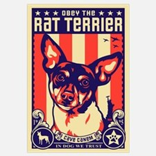 Obey the Rat Terrier! USA