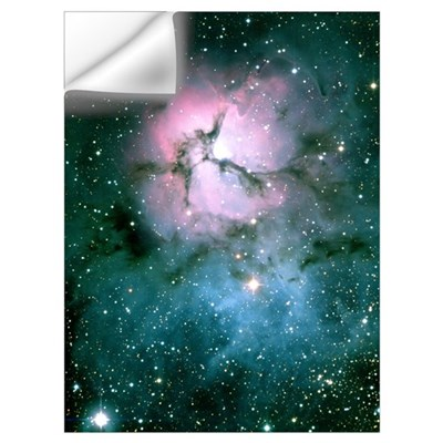Trifid Nebula Wall Decal