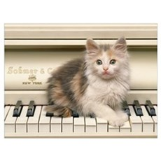 PIANO KITTY Canvas Art