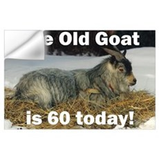 Old Goat is 60 Today Wall Decal