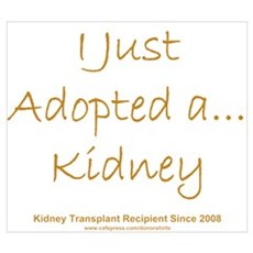 2008 Recipient Adopted Kidney Poster