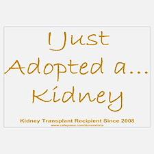 2008 Recipient Adopted Kidney