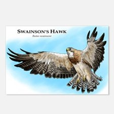 Swainson's Hawk Postcards (Package of 8)