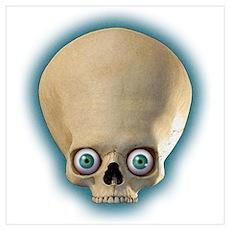 Bug-Eyed-Skull Poster