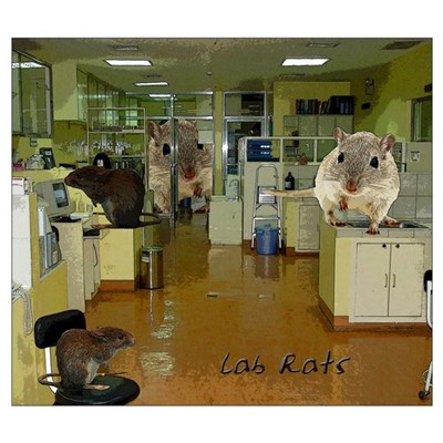 Lab Rats Framed Print