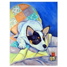 Australian Cattle Dog Canvas Art