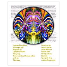 Psychedelic Drug Poster