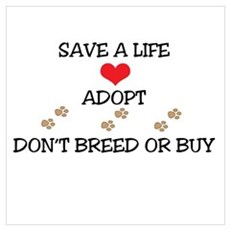 Adopt a Pet Canvas Art