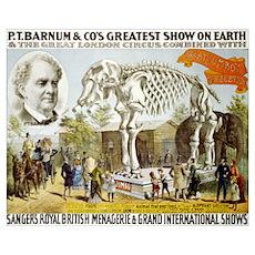 BARNUM ELEPHANT 16x20 Poster