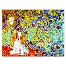 Cavalier King Charles Spaniel Painting Framed Pane Poster
