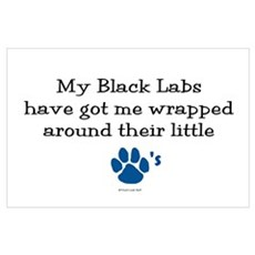 Wrapped Around Their Paws (Black Lab) Poster