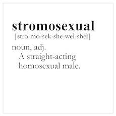 STROMOSEXUAL / Gay Slang Poster