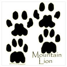 Mountain Lion Tracks Poster
