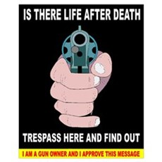 Funny Gun Warning Poster