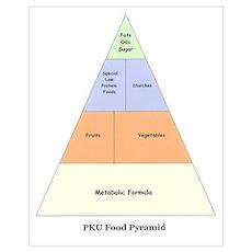 PKU Food Pyramid Poster