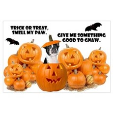 Trick Or Treat (Boston Terrier) Poster