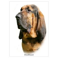 Bloodhound 9Y404D-135 Poster
