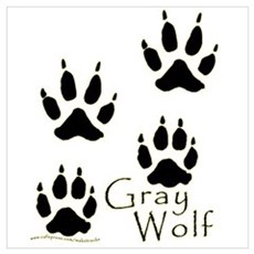 Gray Wolf Track Design Poster