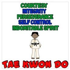 Tenets Of Tae Kwon Do Canvas Art