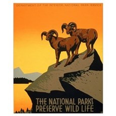 1930s Vintage Preserve Wildlife WPA Small P Poster