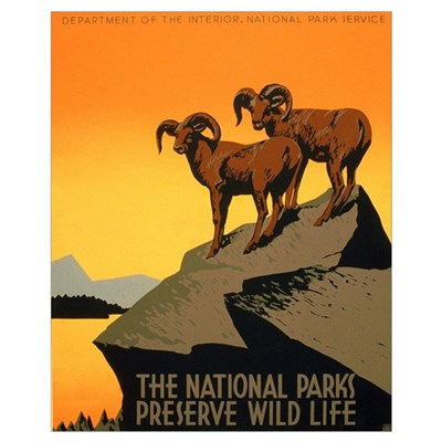 1930s Vintage Preserve Wildlife WPA Small P Poster
