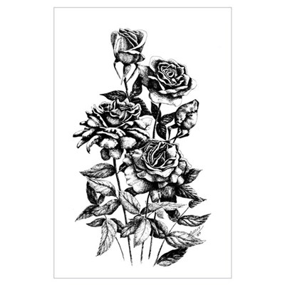Pen and Ink Roses Poster