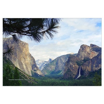 Yosemite Valley- Canvas Art