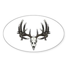 Big whitetail buck Decal