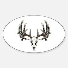 Big whitetail buck Decal