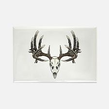 Big whitetail buck Rectangle Magnet