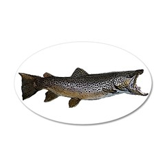 Brown trout 22x14 Oval Wall Peel