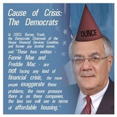 Cause of the Crisis: The Democrats r Poster