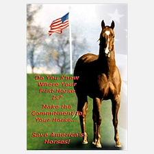 Save America's Horses