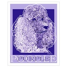 Purple Poodle Poster