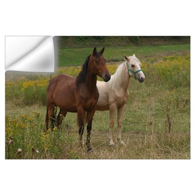 Andalusians in field Wall Decal