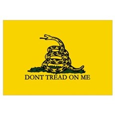 Don't Tread on Me Canvas Art