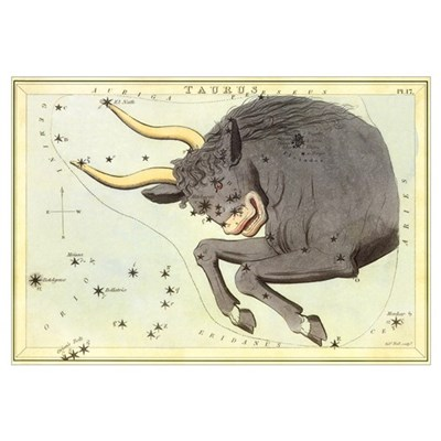 Vintage Taurus Canvas Art