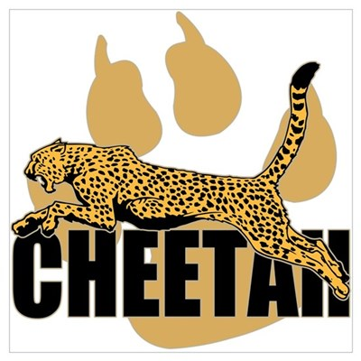 Cheetah Power Poster