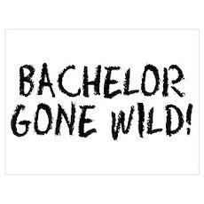 Bachelor Gone Wild Poster