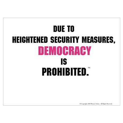Democracy Is Prohibited Mini Poster