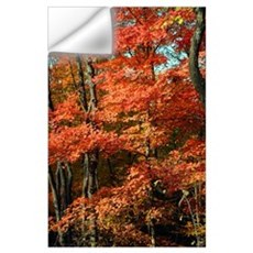Autumn Splendor Wall Decal
