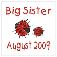 Big Sister Ladybugs August 20 Poster