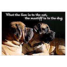 Mastiff pair Poster