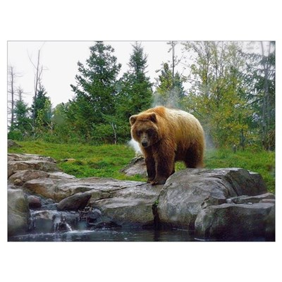Grizzly Wall Art Canvas Art