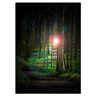 Lighted Path Poster
